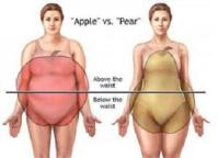 apple-and-pear-body-shape